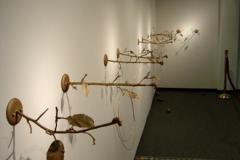 Locust, 2004